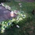 #wirbleibenzuhause und im Garten